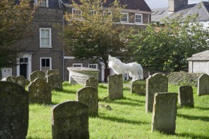 The plastic bottle wolf in the graveyard