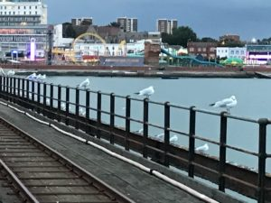 Southend from the Pier