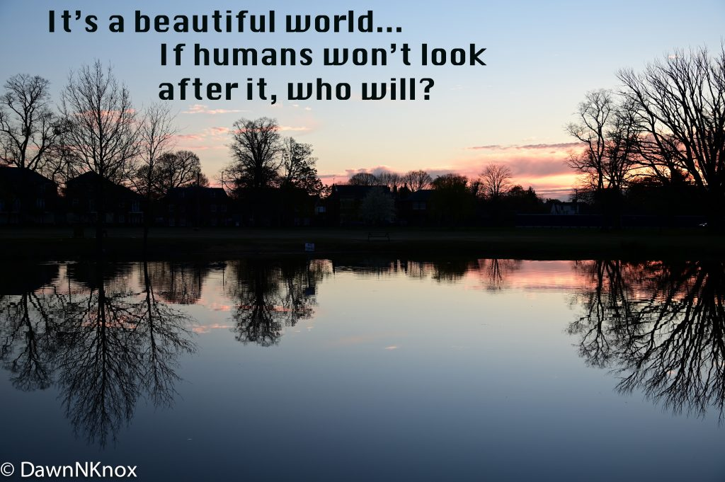 Cli Fi Poster It's a beautiful world if humans won't look after it who will